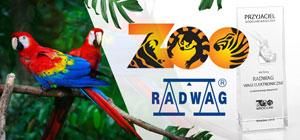 """RADWAG jako """"Przyjaciel wrocławskiego zoo 2018"""""""
