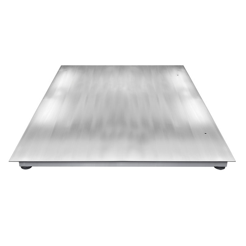 WPT/4 3000 H8/Z Stainless Steel Platform Scale, pit version