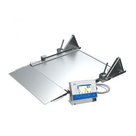 HX7.4N.600.H4.LD Multifunctional Stainless Steel Ramp Scale, pit version in Industrial scales