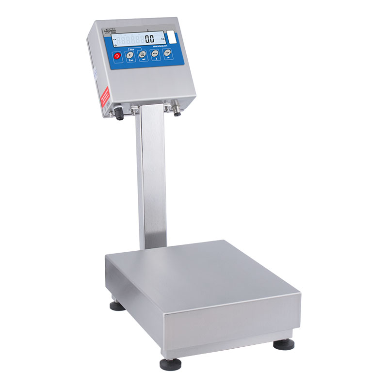 WPT 6/H2 Waterproof Scales With Stainless Steel Load Cell